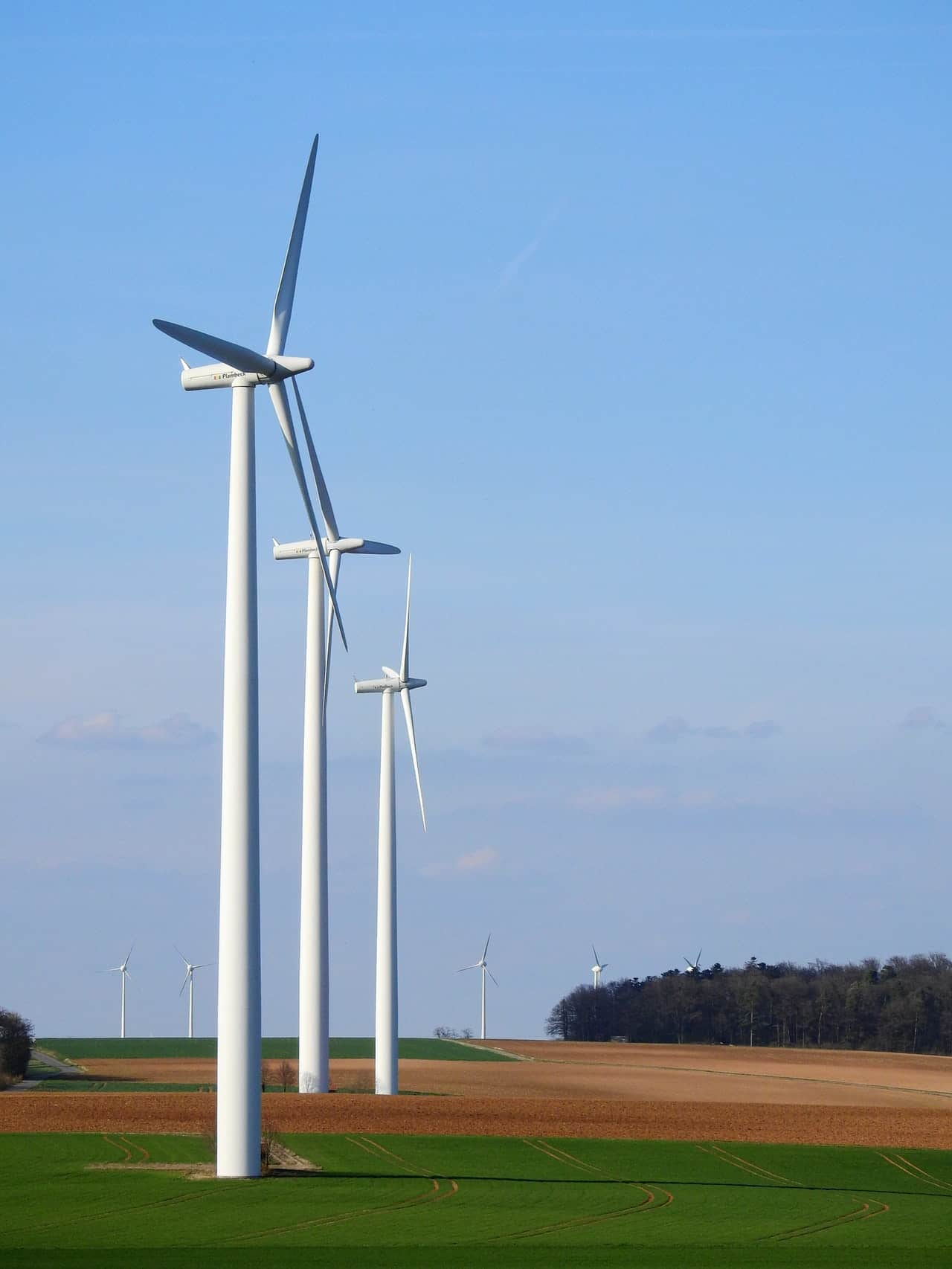 Facts About Working Of Wind Generator