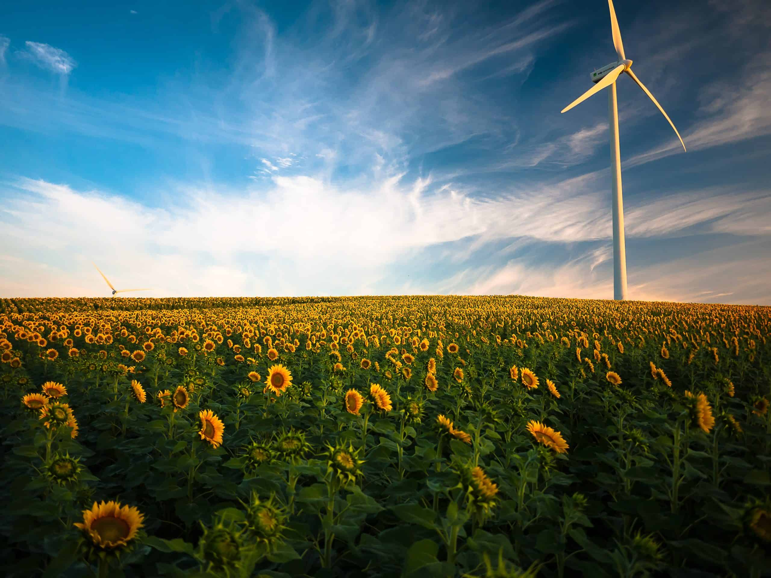 Renewable Energy – What And Why?